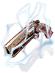 Revólver de Iansã [2]